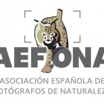Arcadina es patrocinador de Aefona, fotógrafos de Naturaleza