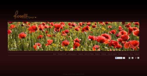 Nueva web de Enrique Rosell Fotografia