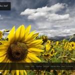 Aragonenfotos.net, una web de fotografía de Aragón