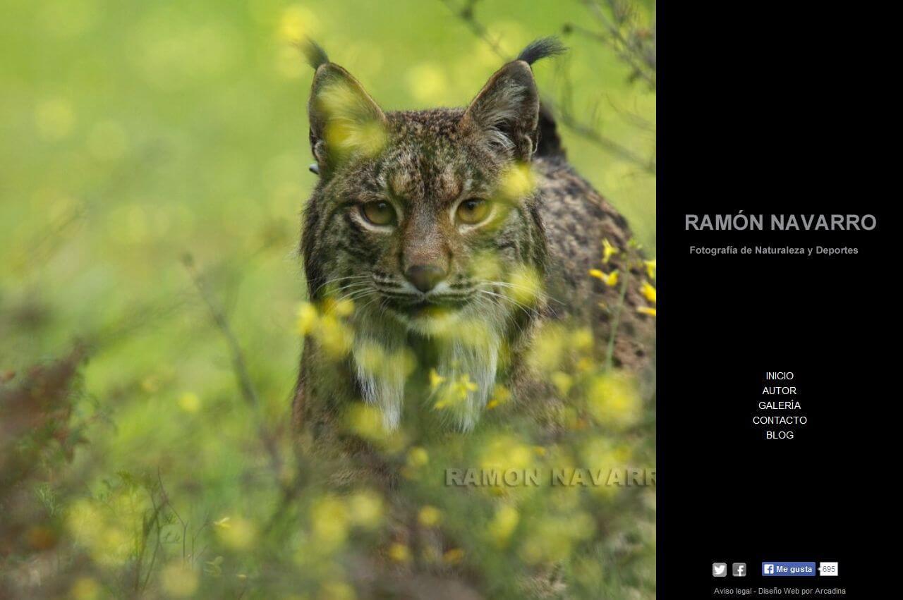 RamonNavarro.net-01