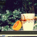 La web personal del fotógrafo chileno Ignacio Sorrel