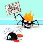¿Eres fotógrafo mosca o fotógrafo araña?