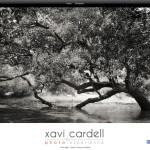 Web de Xavi Cardell, un juego de perspectivas y reflejos