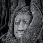 Web de David Riquelme Fotógrafo, abriendo nuevos canales en la fotografía
