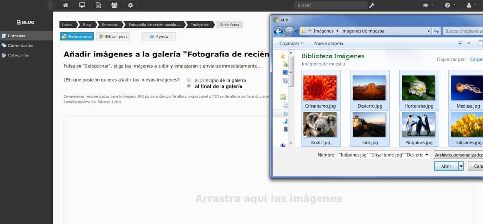 Blogparafotografo1