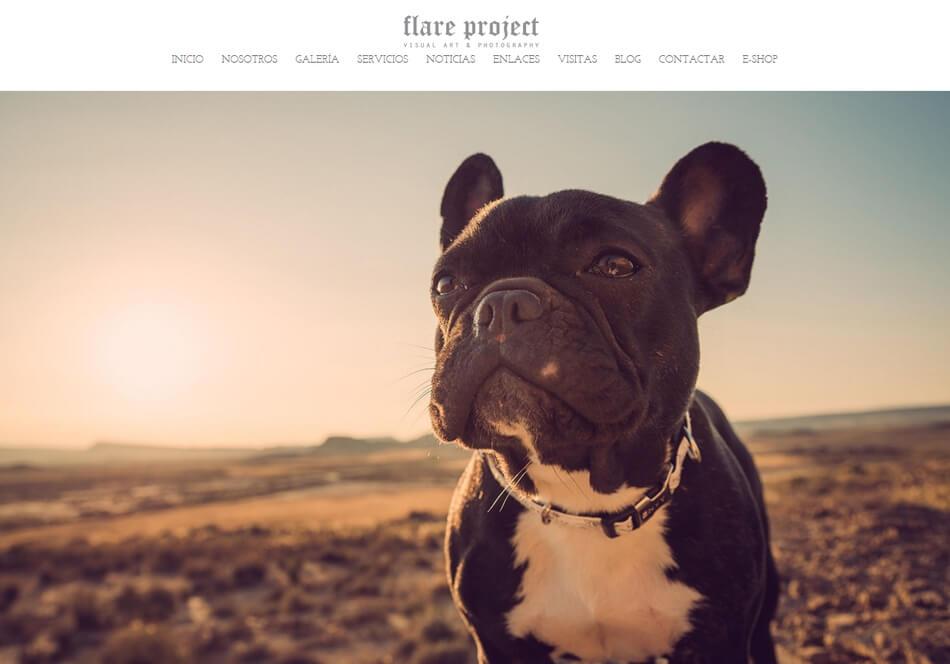 FlareProject