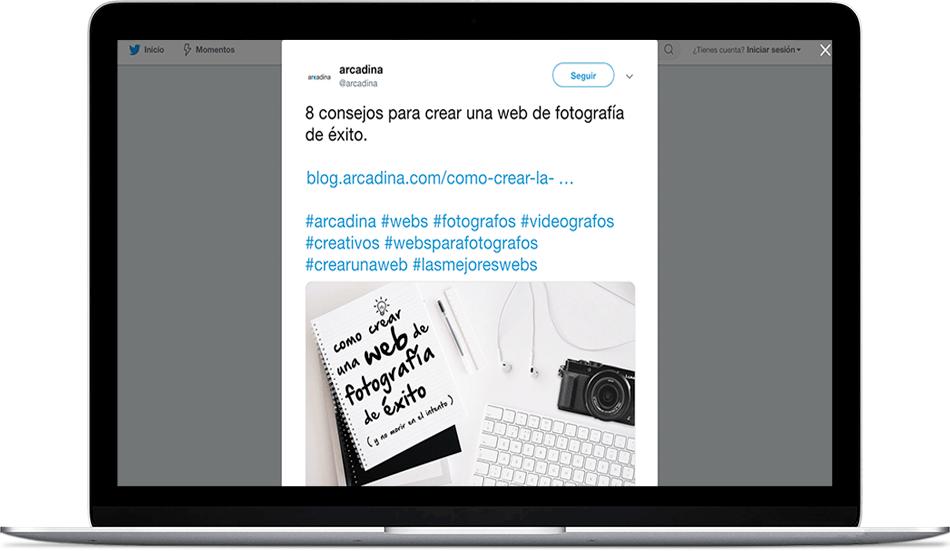 Arcadina-twitter-3