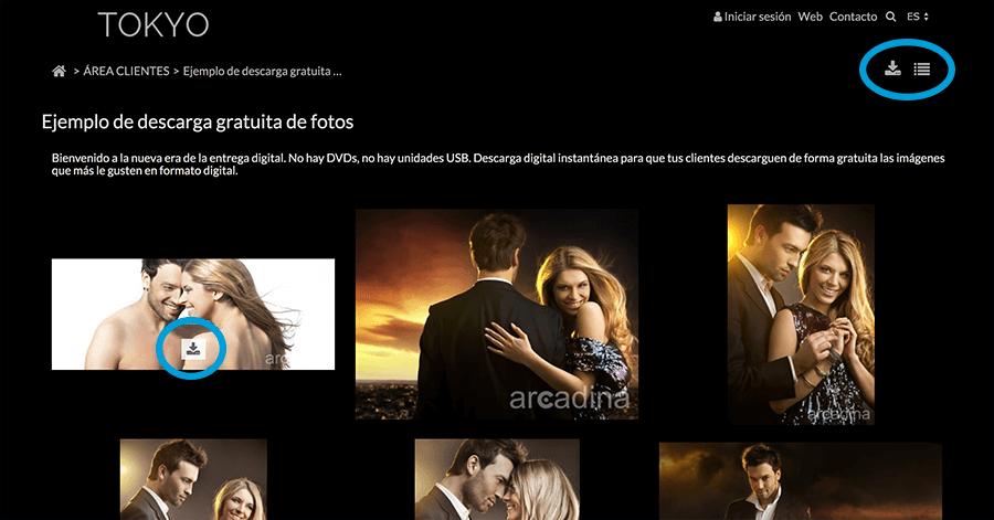Arcadina-descarga-gratuita-2