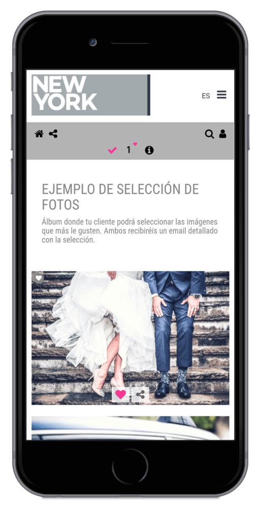 Arcadina-álbum-selección-fotos-área-clientes-11
