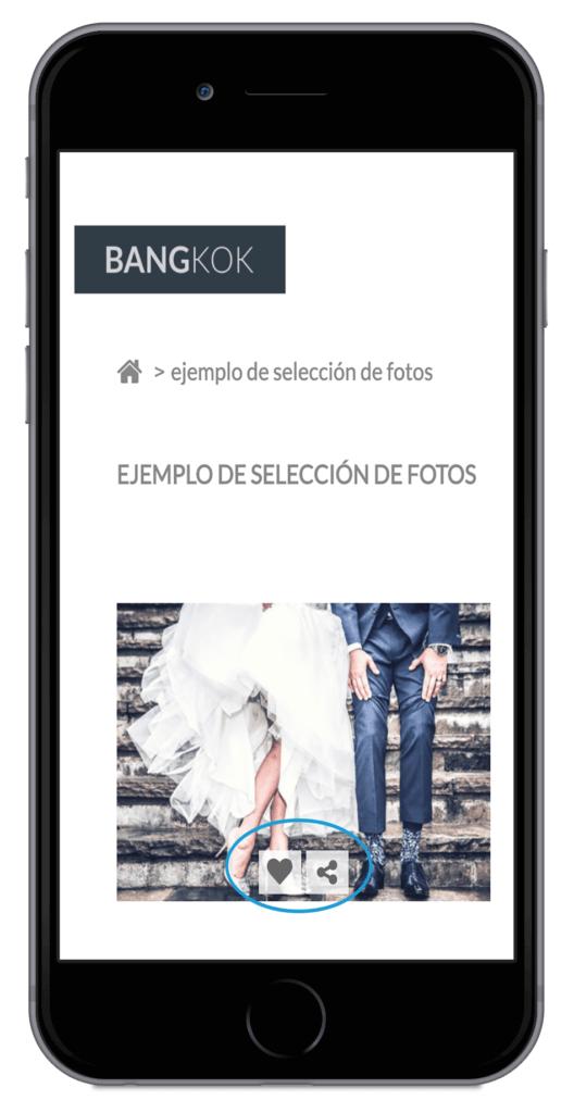 Arcadina-álbum-selección-fotos-área-clientes-12