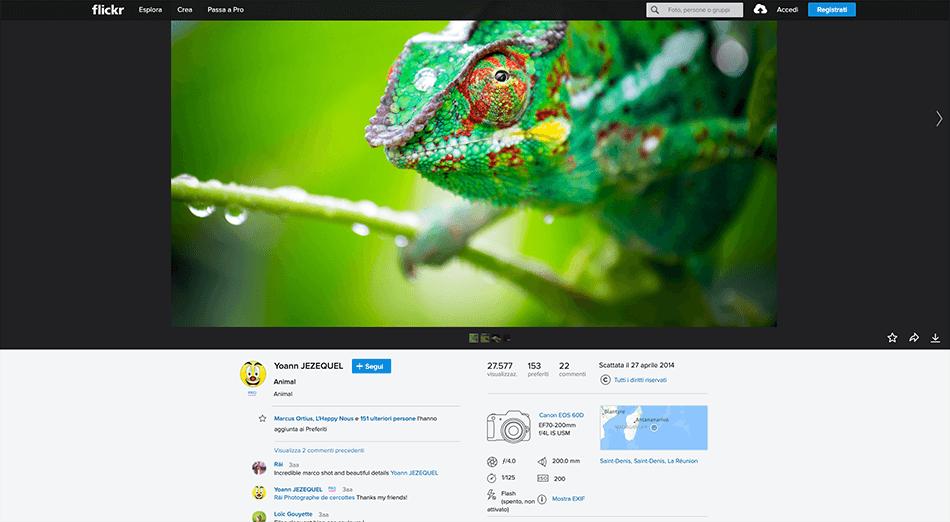Arcadina-banca-immagini-Flickr-14