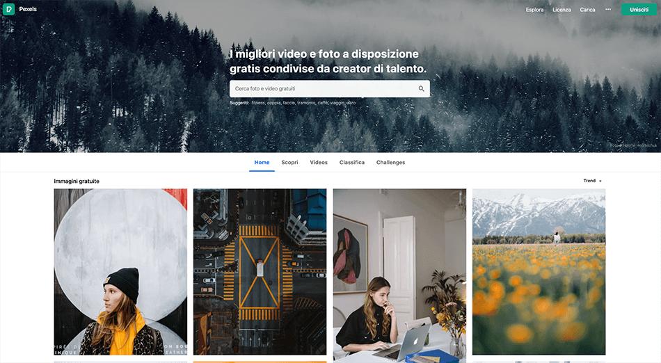 Arcadina-banca-immagini-Pexels-10