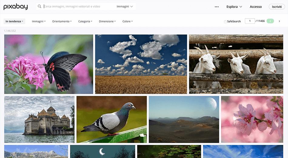 Arcadina-banche-immagini-gratuite-fotografi-creativi-2