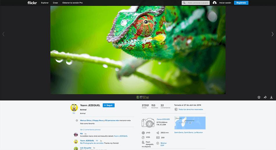 Arcadina-banco-imágenes-Flickr-14