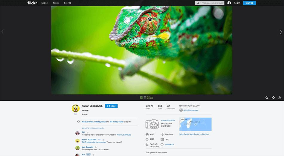 Arcadina-bank-images-Flickr-14