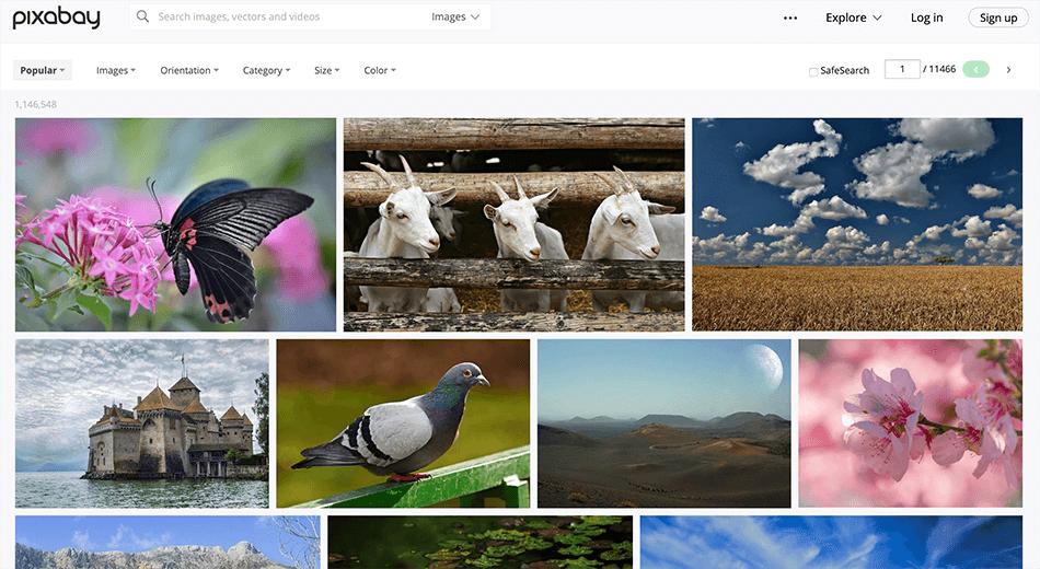 Arcadina-free-image-banks-photographers-creatives-2